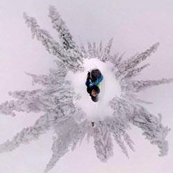 360° snow trees